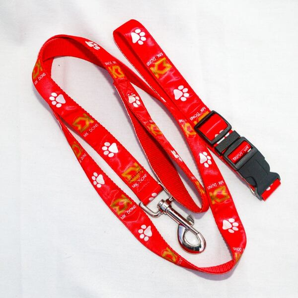 Dog Coller and Lead Set