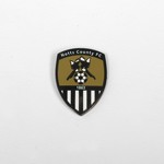 NEW CREST BADGE SHIELD