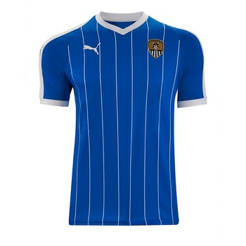 ADULT AWAY SHIRT 1819 SEASON   PUMA