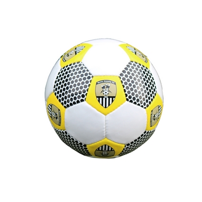 SIZE 5 FOOTBALL WITH CREST     4PU SHINY