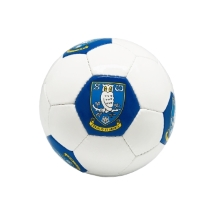 SWFC Blue/White Crest Ball