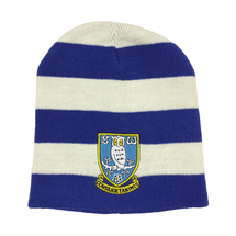 Blue/White Striped Beanie