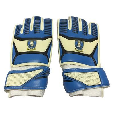 SWFC GK Gloves